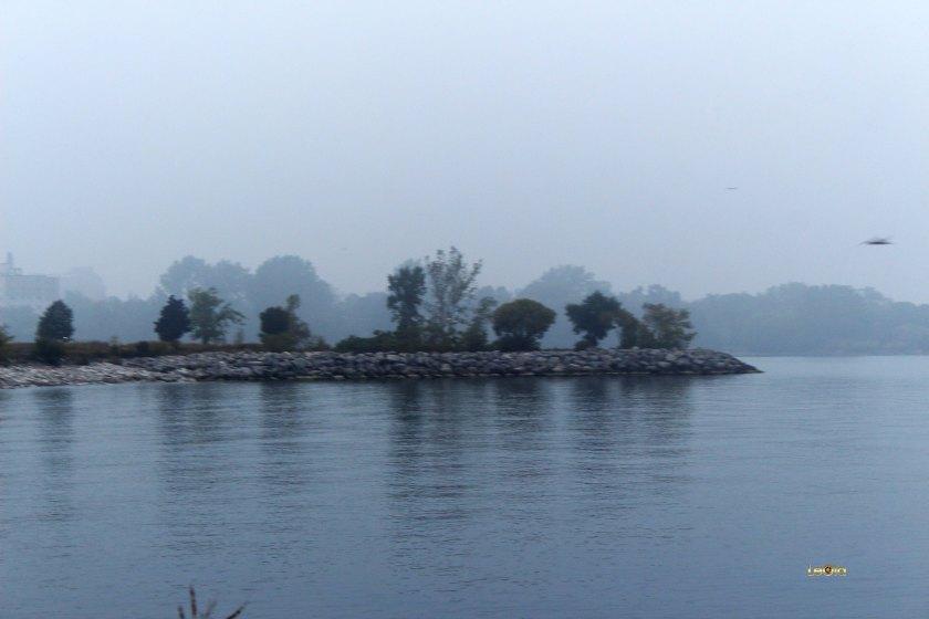 img_3641-misty-morning-copy