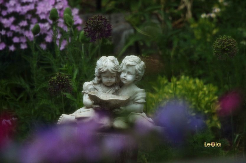 IMG_5420 Garden copy