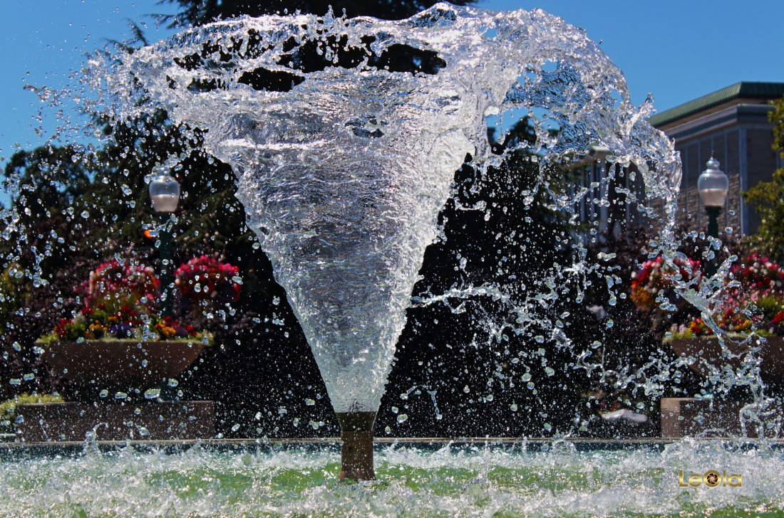 IMG_5155 Water a copy.jpg
