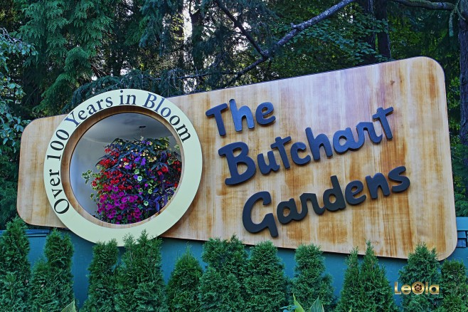 IMG_9124 Butchart Gardens copy.jpg